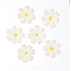 Flower Fondant Cutter & Mould
